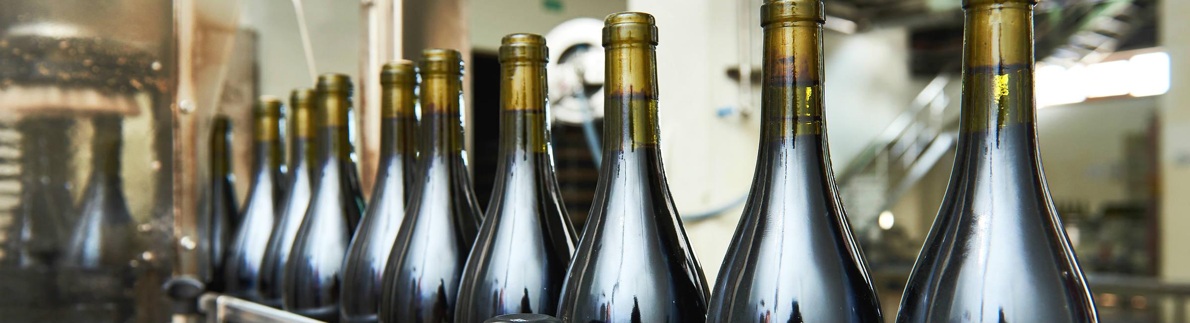 Vue d'une usine d'embouteillage de vins